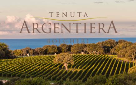 Argentiera 436x272 - SPOTLIGHT ON WINERY