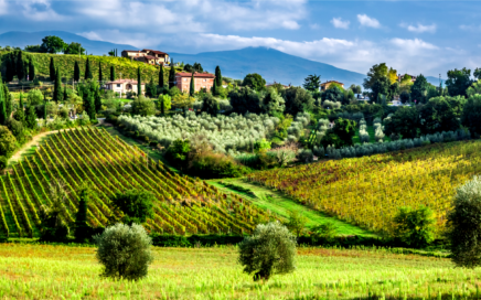 Picture2 436x272 - Tuscans Specials